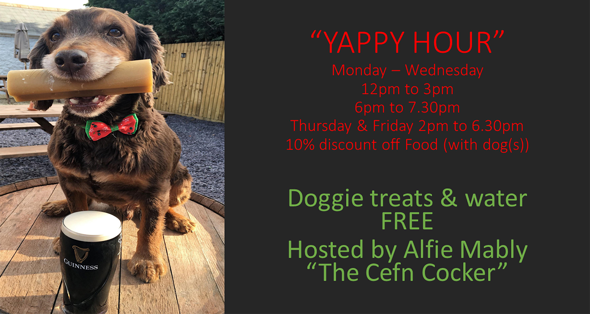 Cefn Mably Arms Yappy Hour